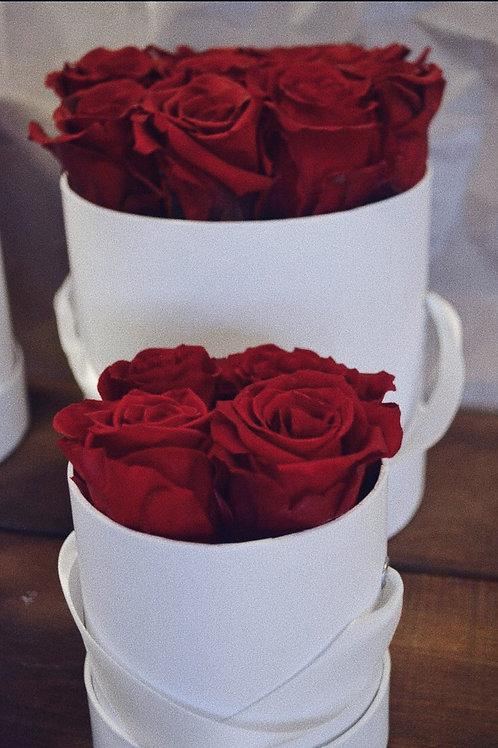 Flowerbox mittel