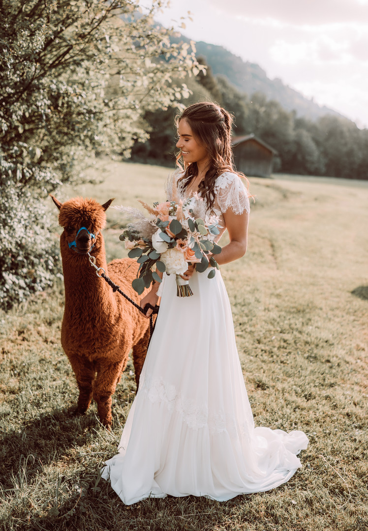 Foto: 99polaroids Alpaca: luckyalpaky Styling: Limabrides Kleid: Brautmoden Mitzi Model: inst @heytammi