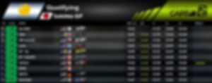 GTE - Qualifying - Round 4.PNG