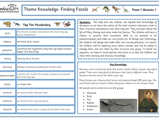 Team 1 Finding Fossils Theme