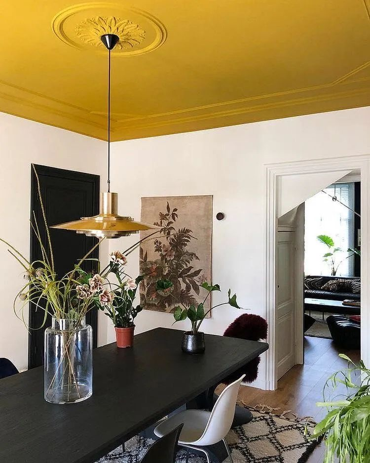 interior design with a  ceiling in mustard yellow color