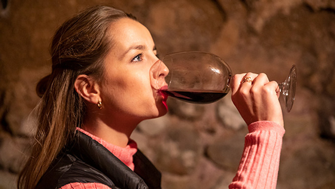 NOSE OF WINE. INITIATION