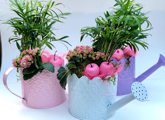 Shades Of Love - watering can arrangement