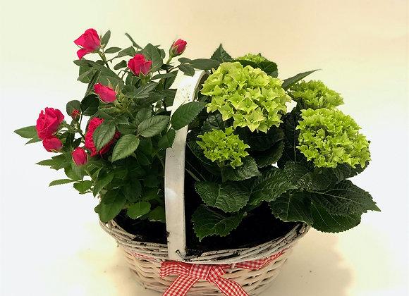 Hidden Pleasure Basket