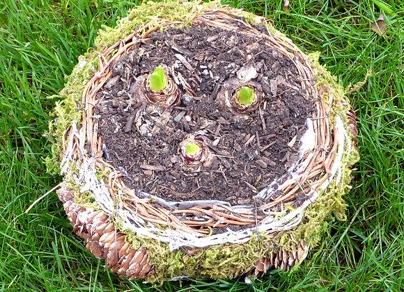 Frosty Nest Festive Planter