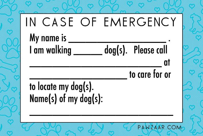 Professional dog walker preparedness