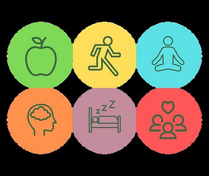 Lifestyle Medicine 6 Areas of Focus