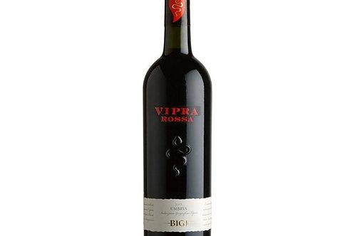 Vipra rouge IGT