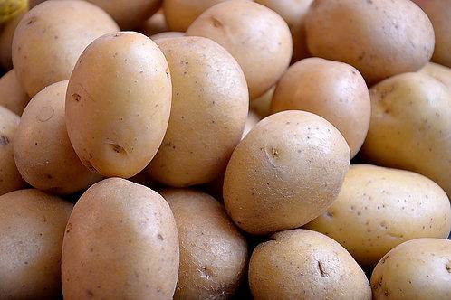 Pomme de terre à purée
