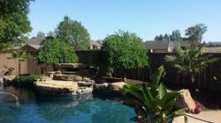 Landscape Reno Waterfall Pool