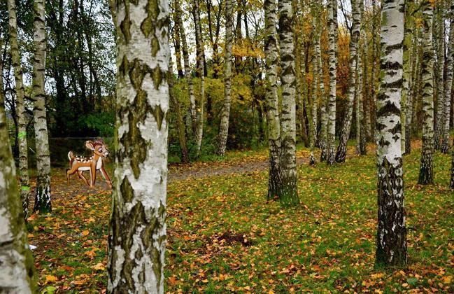 Finde das Bambi.JPG