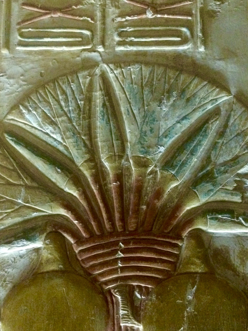 A Lotus depicted at the Seti I temple