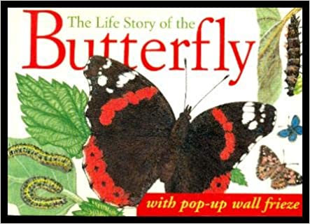 The Life Story Of The Butterfly - Jilly Macleod