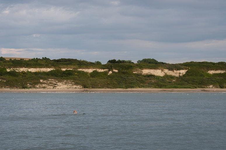Enfin la plage