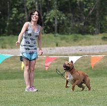 Tacoma WA Dog Walker