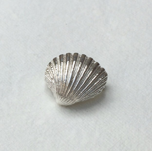 Cockle shell brooch