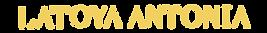 Latoya Antonia Graphic Logo Development_