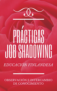 prácticas_job_shadowing.png