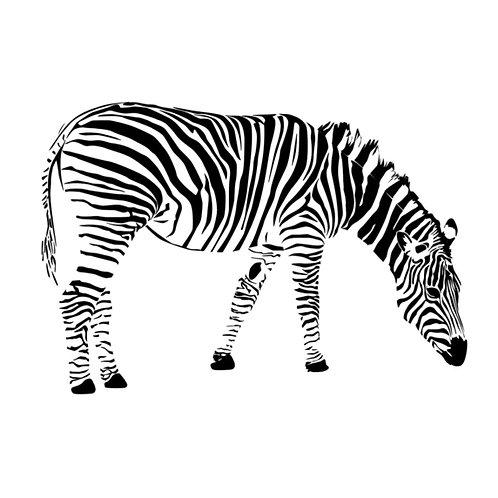 Kaart | Zebra | LabelZeev
