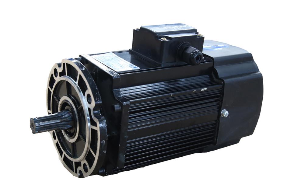 Double-Speed Motor