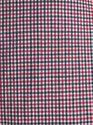 Blue & Red Small Plaid