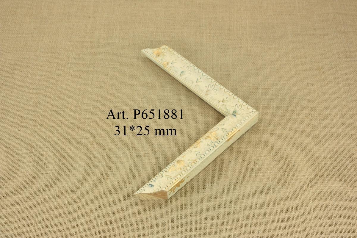P651881