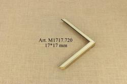 M1717.720