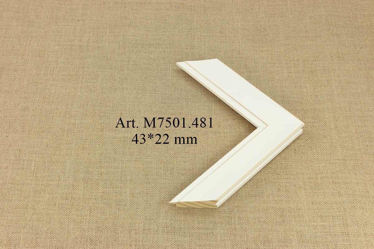M7501.481