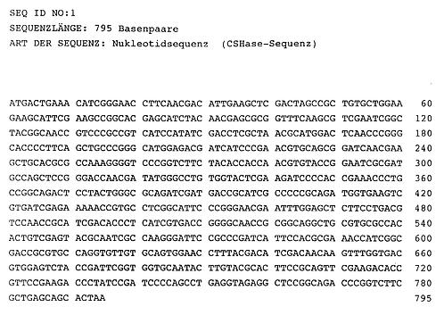 DNA-Nukleotidsequenz.png