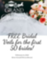 FREE Bridal Veils for the first 50 bride