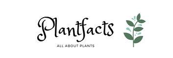 Plantfacts Pflanzenshop