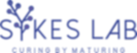 Sykes-Lab-Logo-dbs-mod.png