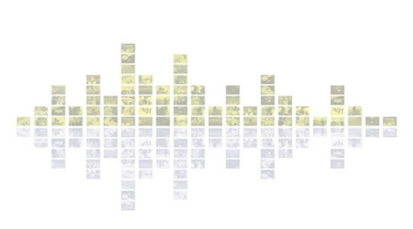 mosaic 05 reduit marca aigua.jpg