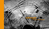 sténopés.jpg