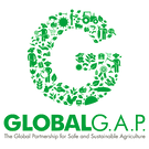 GGAPロゴ.png