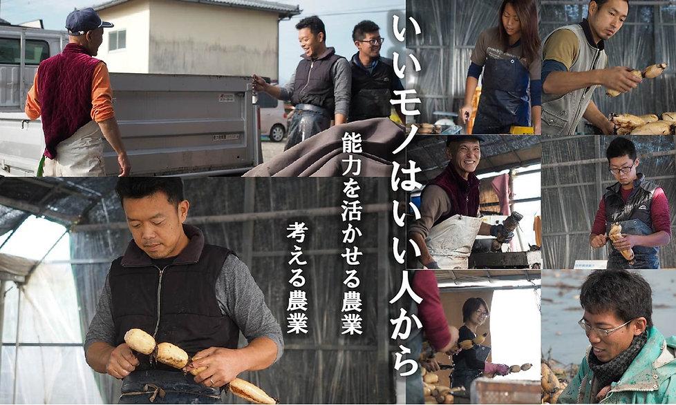 熊本 レンコン カワカミ おいしい 農業法人