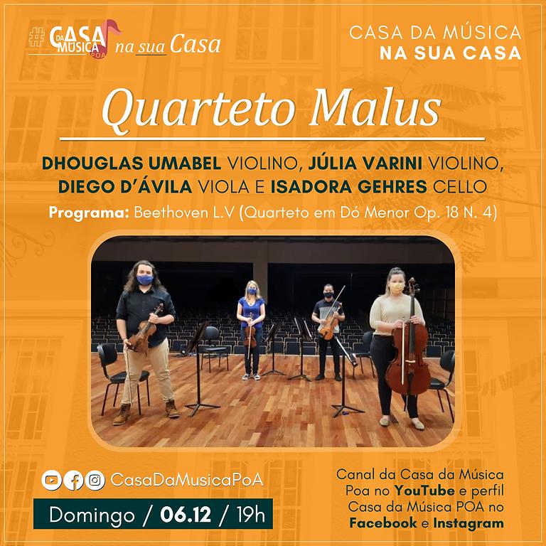 Quarteto Malus na Casa da Música