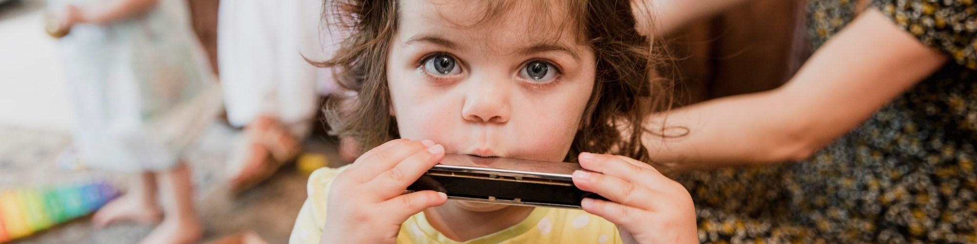 gaita harmonica