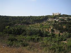 Fun Malta | Buskett Gardens