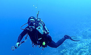 Things to do in Malta | Scuba Diving