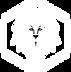 Logo BDS-IGS blanc.png