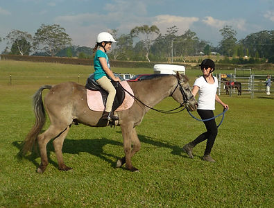 Port Macquarie Horse Riding Lessons