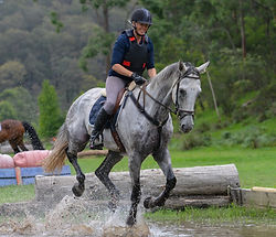 Horse riding in Port Macquarie