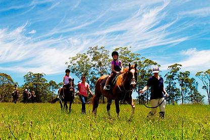 Cassegrain Horse Riding