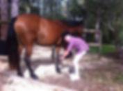 lean horsemanship skills