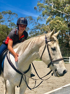 Horse riding lessons Port Macquarie
