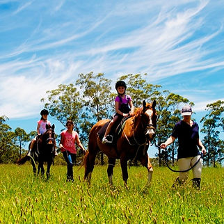 Trail rides Port Macquarie