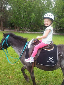 Port Macquarie pony rides