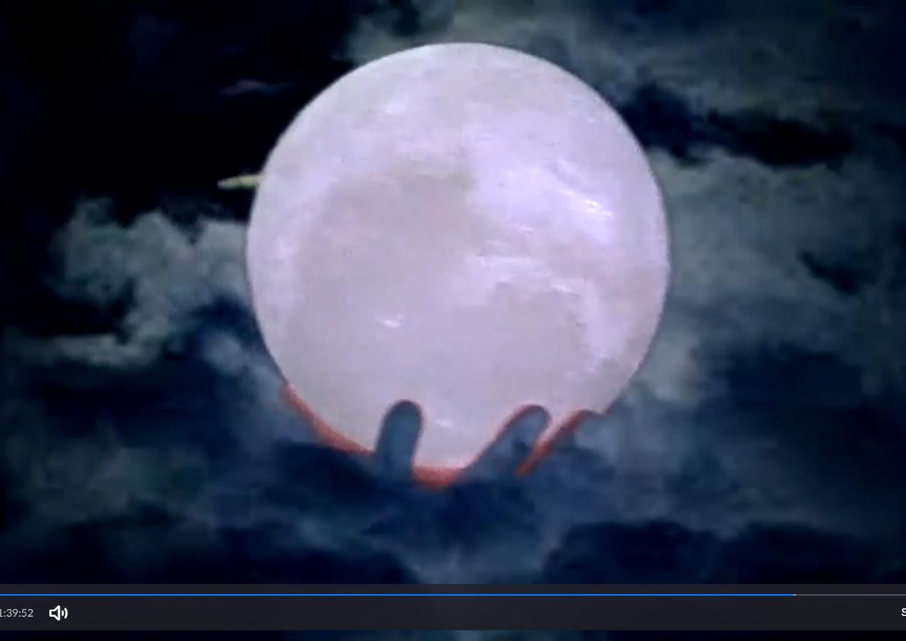 zoea moon.png