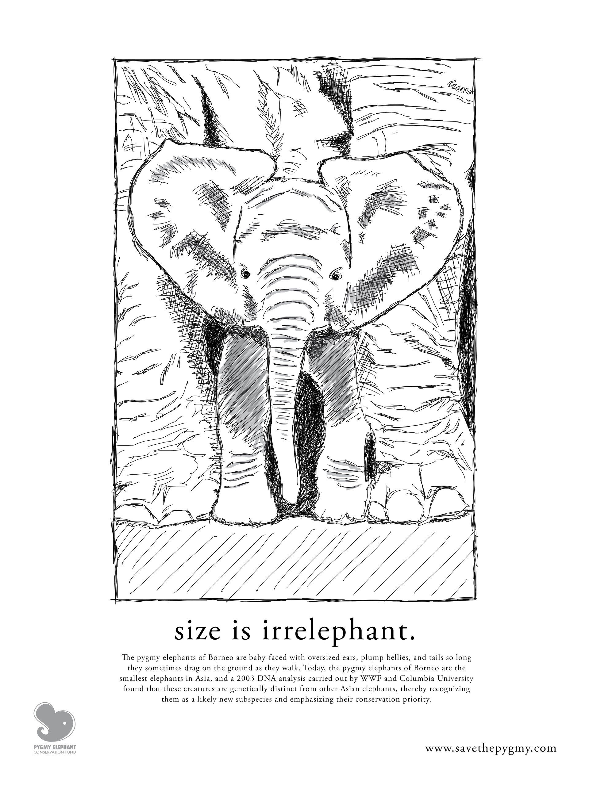 Pygmy Elephant Conservation Fund Illustrated Poster